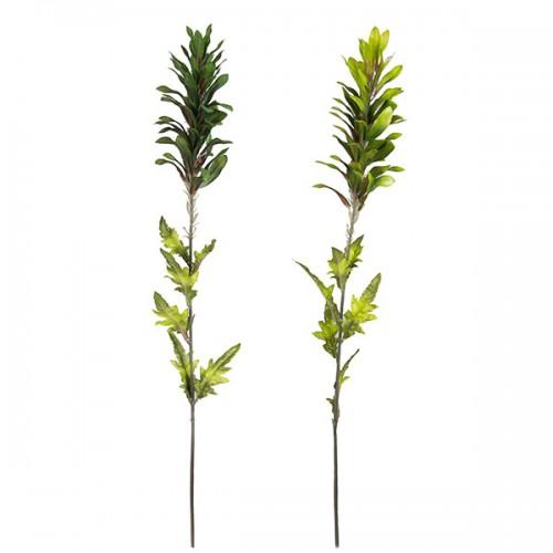 Зелень декоративнолистная 84 см
