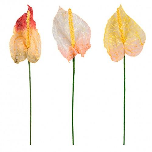 Цветы декоративые Антуриум 60 см