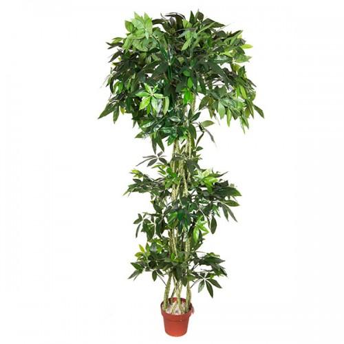 Искусственное дерево Пахира в горшке 190 см