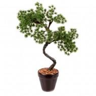 Дерево Бонсай в горшке 39 см