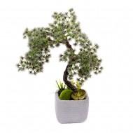 Дерево Бонсай в горшке 34 см