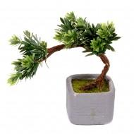 Дерево Бонсай в горшке 30 см