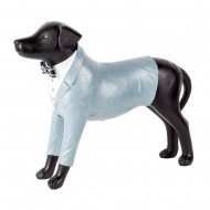 Статуэтка Собака Такса в пиджаке 36х28 см
