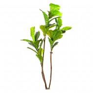 Искусственное дерево Фикус Лира 160 см