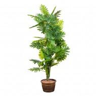 Композиция Дерево Филодендрон 150 см