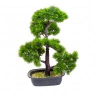 Дерево Бонсай в горшке 45 см